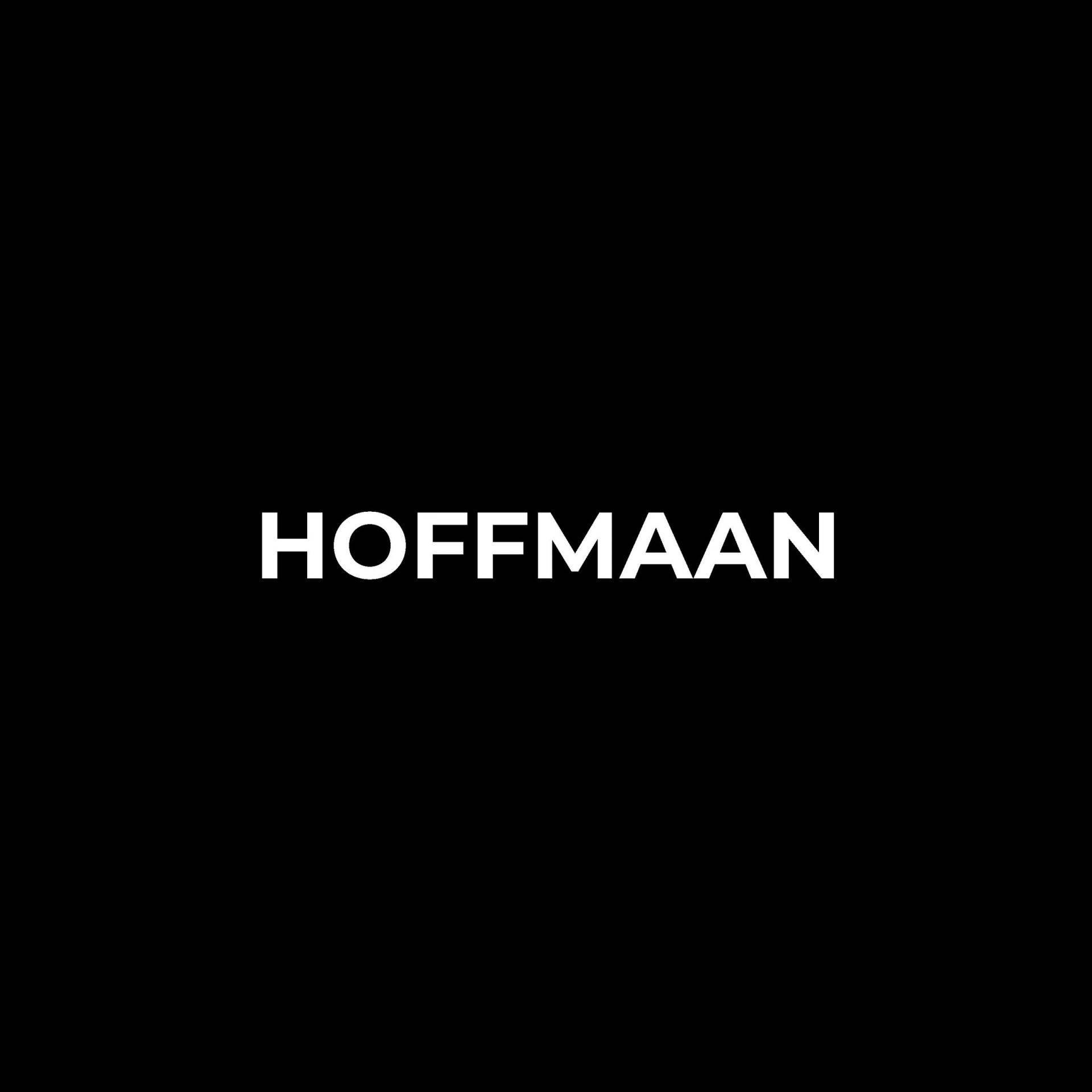 brandon hoffmaan artist name